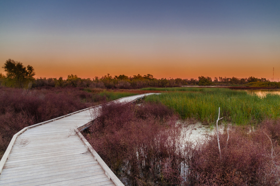 I-20 Wildlife Preserve
