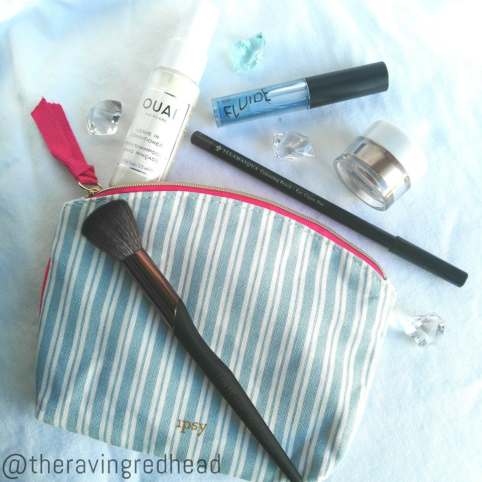 My January 2019 Ipsy Bag