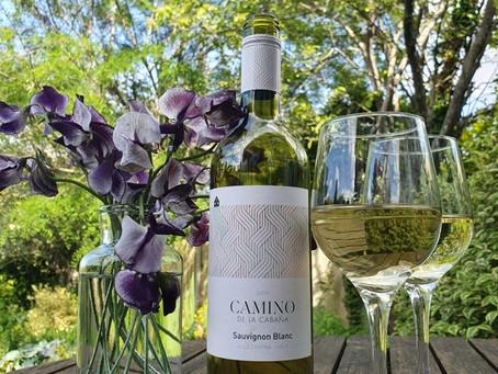Wineutopia Wednesday - Camino De La Cabana Sauvignon Blanc & Spaghetti Vongole