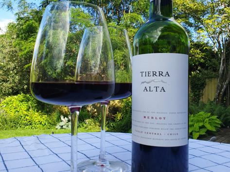 Zwiebelkuchen and a Final Wine Utopia Wine Club Review...