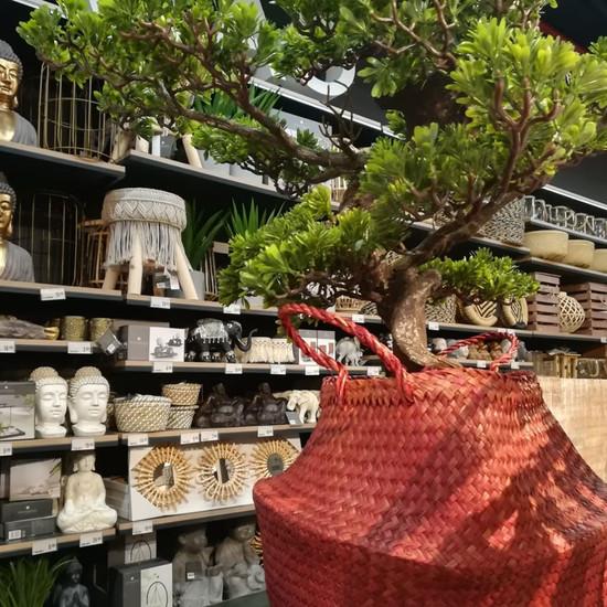 De Borla - Alameda Shop & Spot - 2019 in