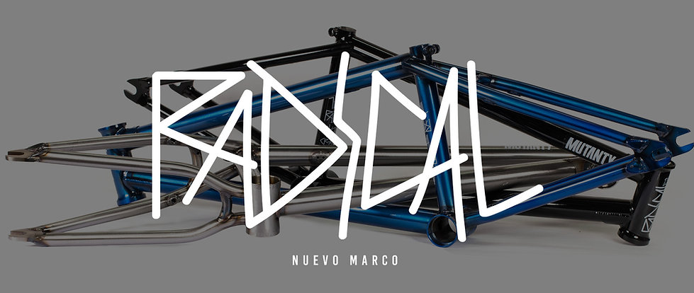 2019 - 08 - 19 - NUEVO MARCO RADICAL.jpg