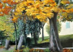 Herbst-Barbara-Holter-Ölbilder2017-Natur-Österreich-Malerei-Malerin-Gemälde.jpg