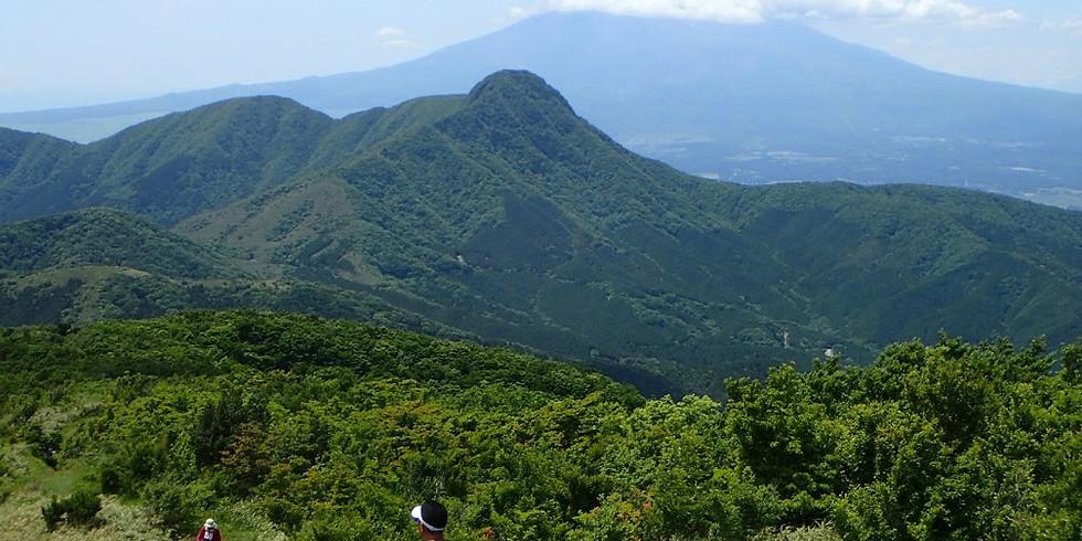 箱根トレイルランニングツアー