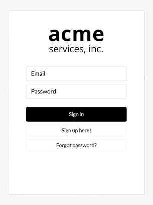 Enterprise Acme Login - Compressed.jpg