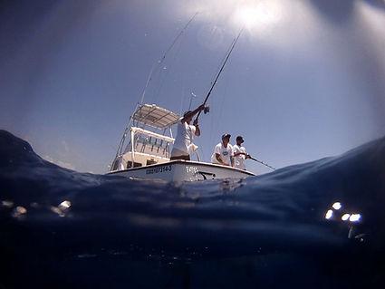 King Island Fishing and Golf
