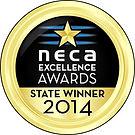 NECA_GoldAwardsMedals2014StateWinner.jpg