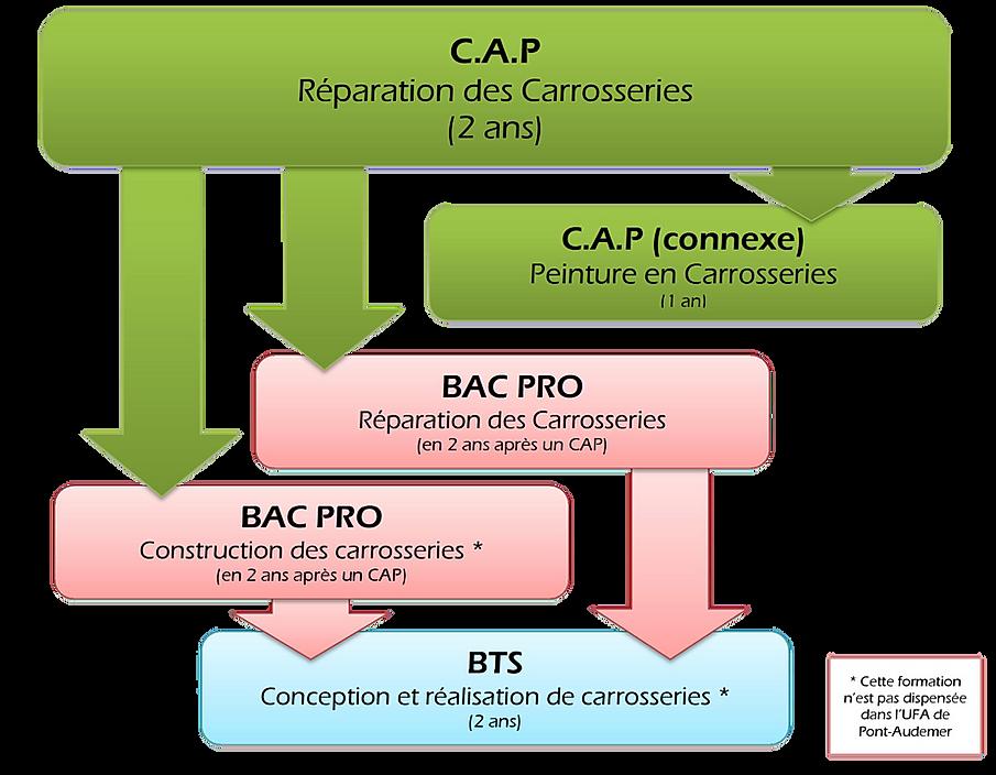 Organigramme formation CAP Réparation des Carrosseries