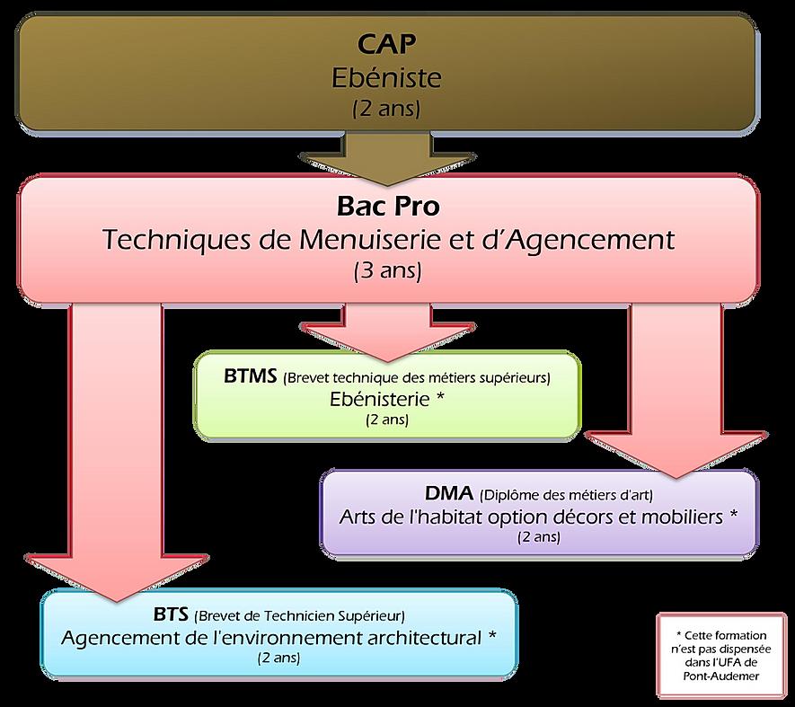 Organigramme CAP ébénisterie