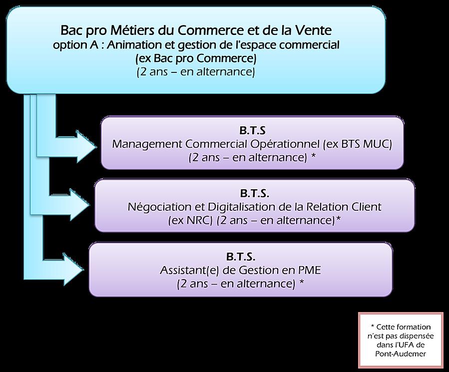 Bac_pro_Métiers_du_Commerce_et_de_la_Ven