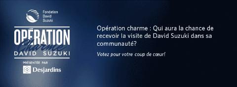 OpérationCharmeDS.png