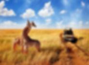 Safari-en-Kenia.jpg
