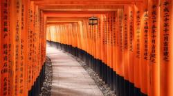 toris-bermellon-santuario-de-fushimi-ina