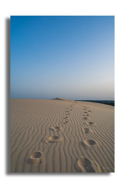 Les pas de la dune.