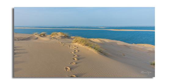 Quelques pas sur la dune.