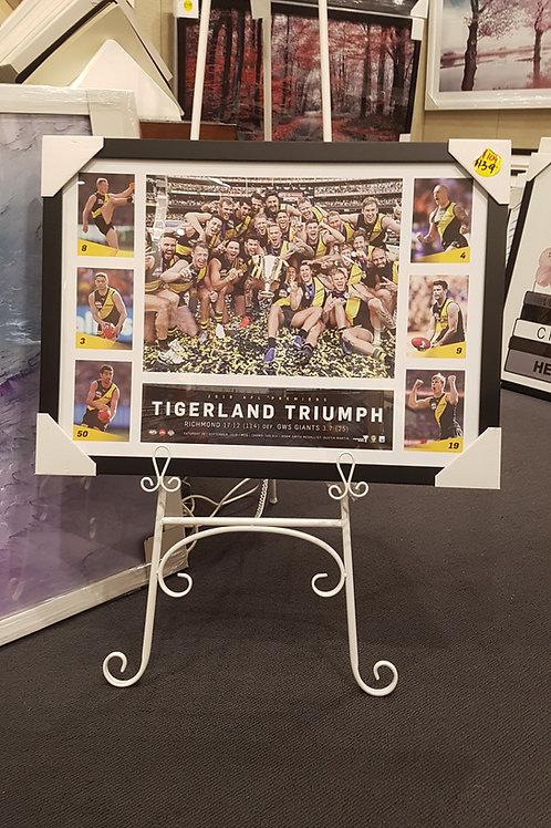 Tigerland Triumph 55 x 75 cm including frame