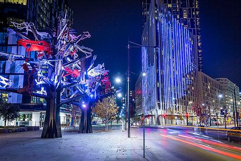 Dynamic Melbourne Images | Including frame