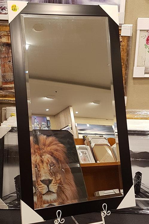 Mirrors | 75 x 135 cm