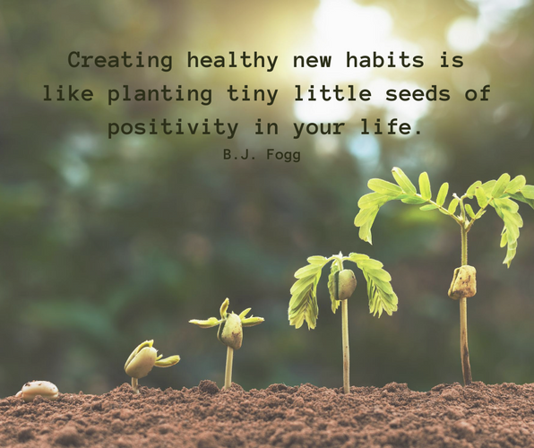 Creating healthy new habits is like plan