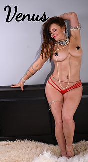 Venus-Fire-Spinner-And-Adult-Entertainer