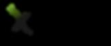 X GROUP Logo