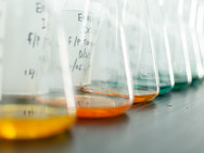 ENVEX Laboratory.jpg