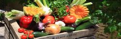 Les Légumes de Saison
