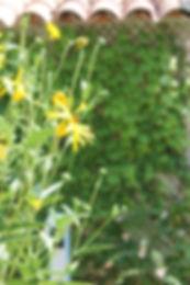 Gite Maussane Les Alpilles Location vacances Maussane Les Alpilles provence maison piscine idée cadeau