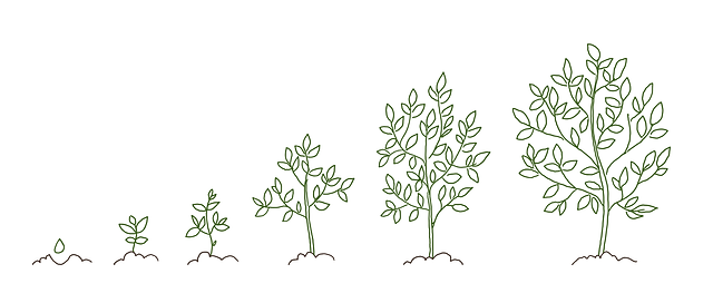 treegrowbanner.png