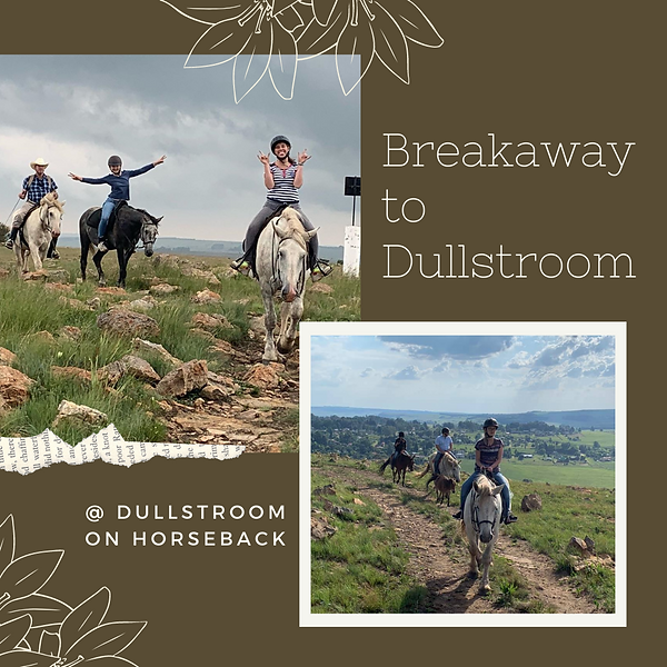 Copy of Breakaway to Dullstroom.png