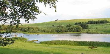 Lake Heron (9).jpg