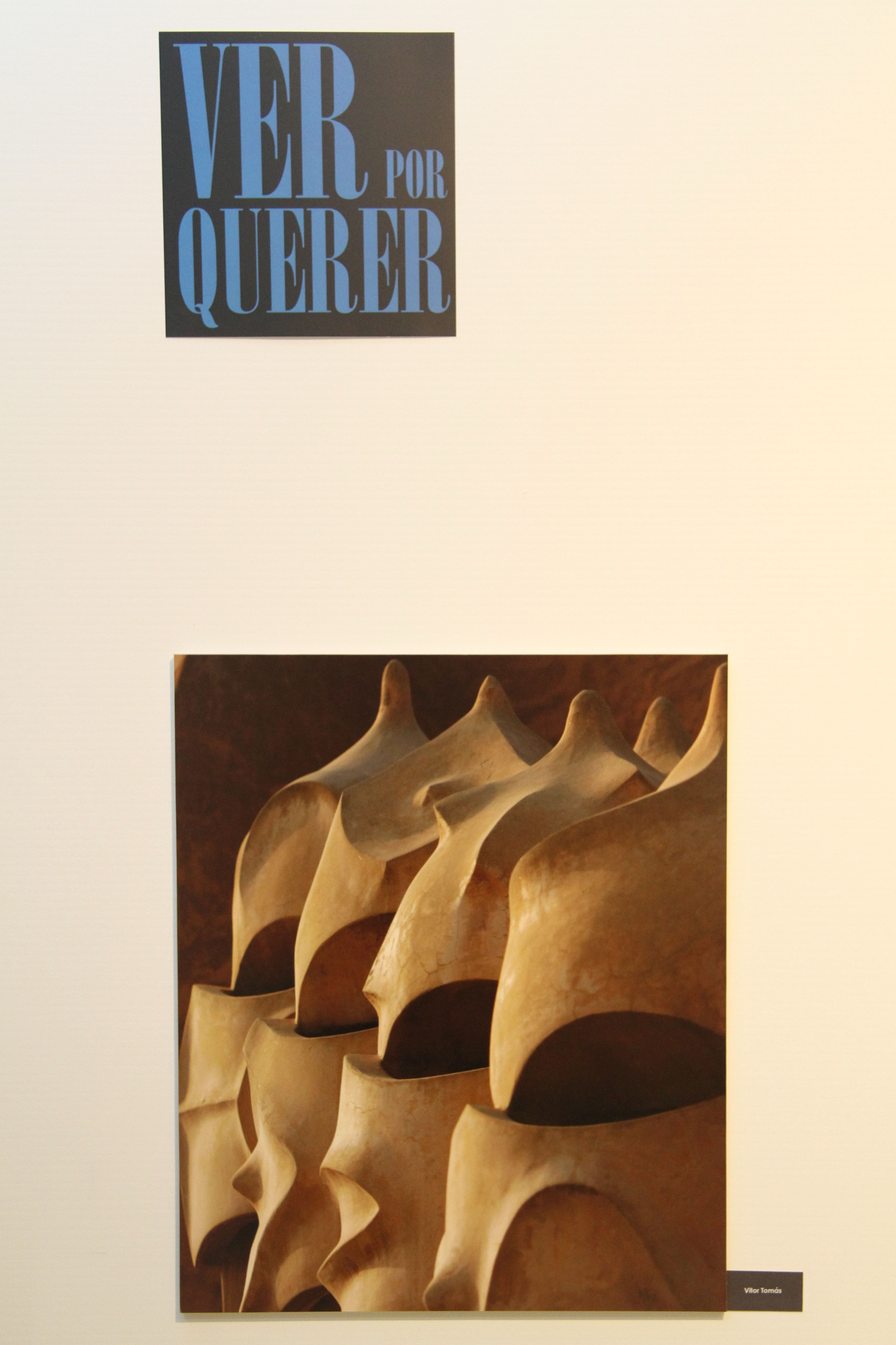 2011 Livro Capa Ver Por Querer2 rz