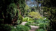 Cheslyn Gardens Part 03