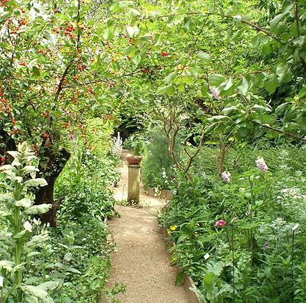 Kräutergarten Weingut Orb