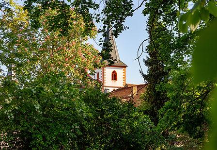 Blick auf den Kirchturm von Westhofen