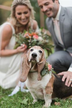 Wedding Pawrents