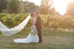 Romance in the Vines