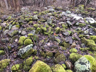 trail rock formation beauties.jpg