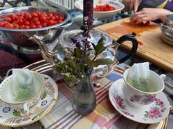 we grow tea!!!!