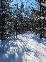 trails ready!.jpg