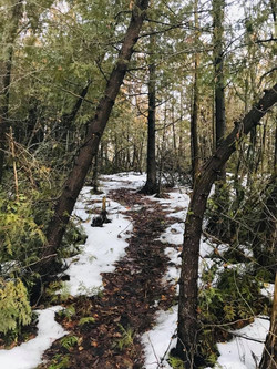 our Trail