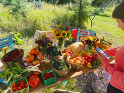 small summer harvest sale