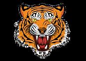 68-688880_tiger-royal-bengal-tiger-tiger-face-angry-tiger_edited.png