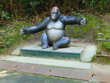 安佐動物公園へ行ってきました。