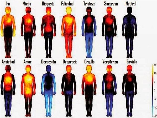 Gráficas de cuerpos que muestran campos de temperatura coporarl según los estados de ánimo