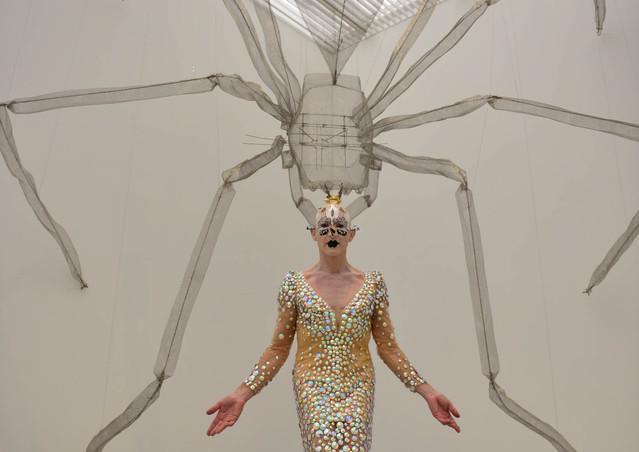 生への言祝ぎ展 蜘蛛+Steven Cohen