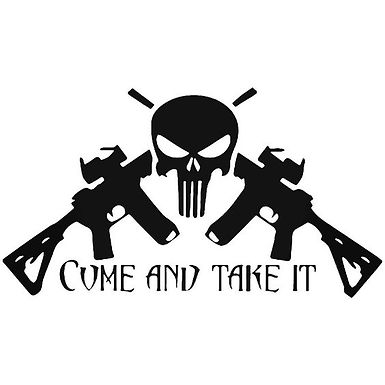Come and Take it Punisher Skull