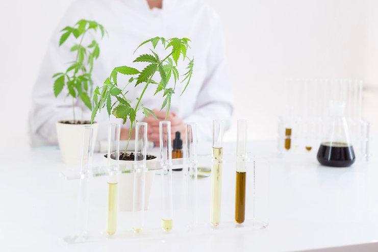 Female scientist in laboratory testing c