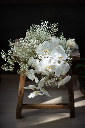 Baby's Breath and Phalaepnosis Bouquet