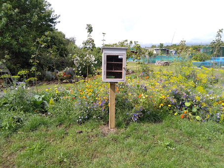 Little Seed Libraries take root to get borough blooming